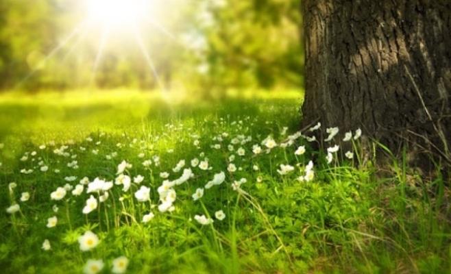 Bahar güneşinden faydalanmanın yolları neler?