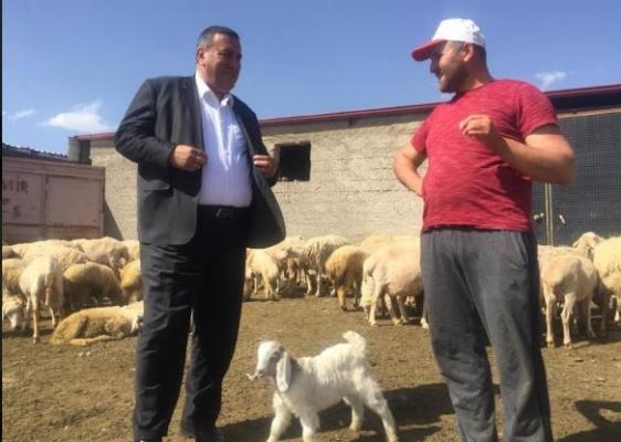 """Gürer: """"Hayvancılıkta yem büyük sorun"""""""