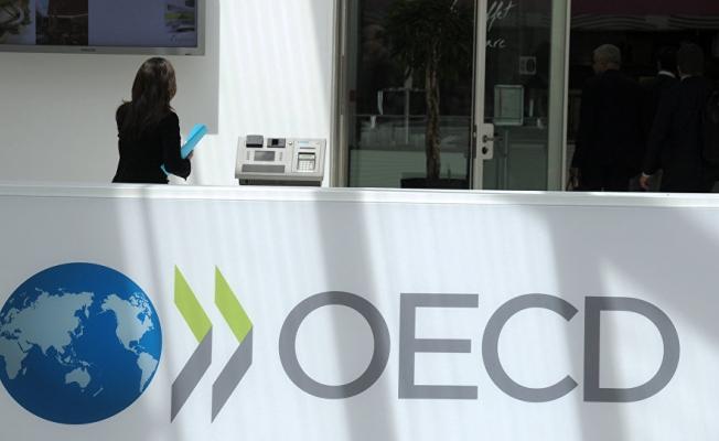 OECD'den flaş Türkiye tahmini!