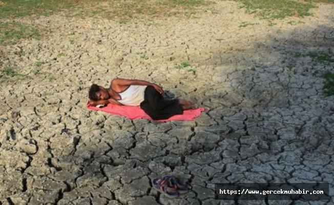 Hindistan'da kuraklık nedeniyle 5 yılda 4 bin 700 çiftçi intihar etti