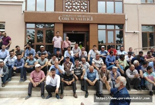 Valiyi yuhaladılar, AKP ve Soylu'yu suçladılar