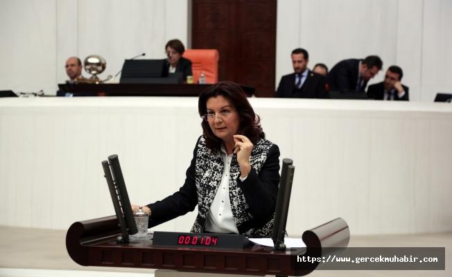 """CHP'li Karabıyık: ''AKP 11. Kalkınma Planı ile Bir Asır Geriye Gitmeyi Hedeflemiş Görünüyor!"""""""