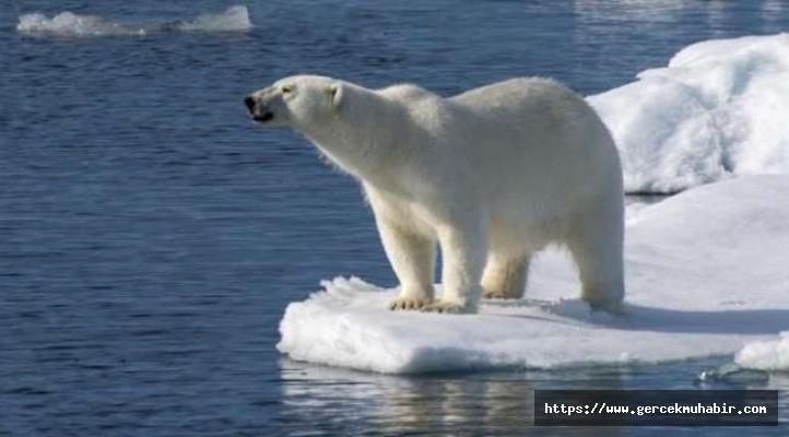 Küresel ısınma emsalsiz boyutta (Uzmanlardan uyarı)