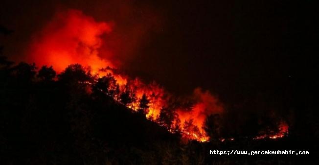 Bakan Kurum'dan orman yangınlarıyla ilgili 'imar' iddialarına ilişkin açıklama