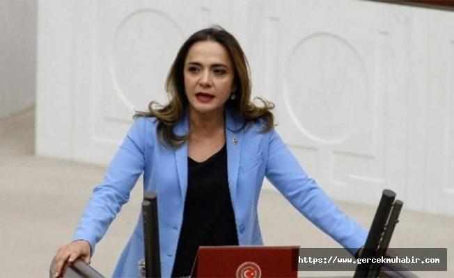 CHP'li İlgezdi: Martı'yı yasaklayan DT, yasaklanan oyun yok diyor!
