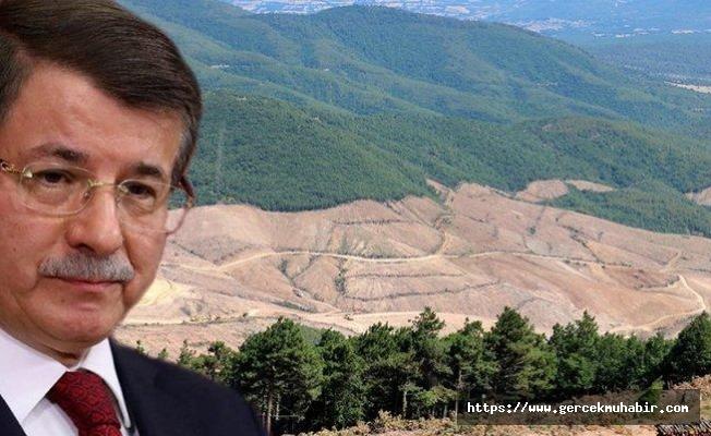 Davutoğlu: Kaz dağları siyasetten öte bir insanlık meselesidir