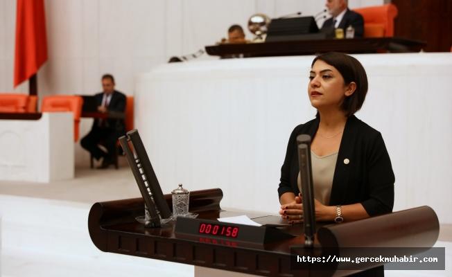 """CHP'li Taşcıer, """"İstanbul Sözleşmesi'nden geriye gidilmez!"""""""