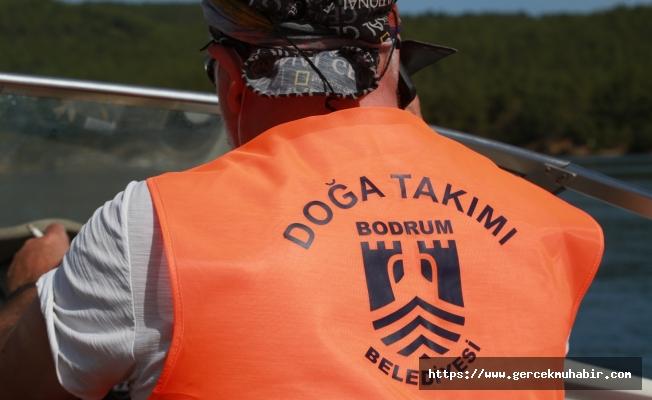 TÜRKİYE'DE İLK KEZ SU ALTINDAN KIYI DENETİMİ BODRUM'DA BAŞLADI