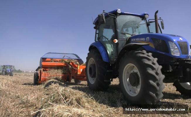 Ankara Büyükşehir'den çiftçiye 25 ilçede tohum desteği