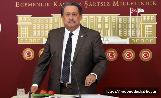 CHP'li Özer'den Akdeniz Meyve Sineği İçin Bakanlığa Çağrı