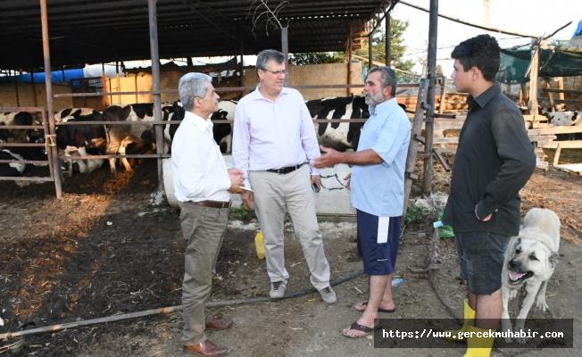 Ayhan Barut'tan Ulusal Süt Konseyi'nin süt kararına sert tepki