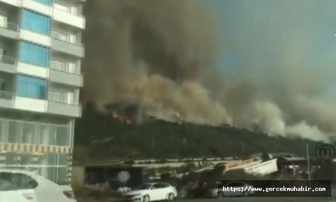 Hatay İskenderun'da Yangın: Evler Tahliye Ediliyor