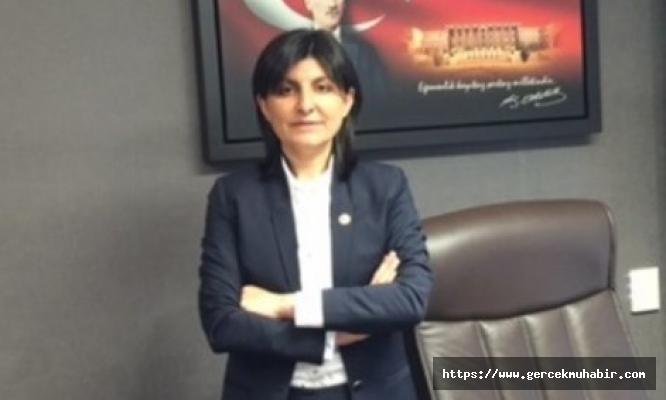 Kopenhang Kriterleri Raporu İlk Kez Türkçe'ye Çevrilmedi, CHP'den Tepki Geldi