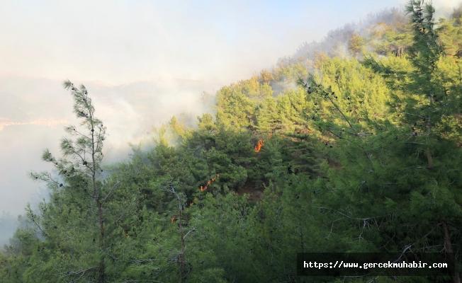 Yangın bölgesinde maden projesi iddiası tepki çekti