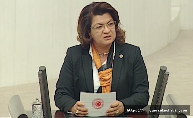 CHP'li Şahin: Hükümet, ''Yangınlar Terör Eylemidir'' Diyemiyor!