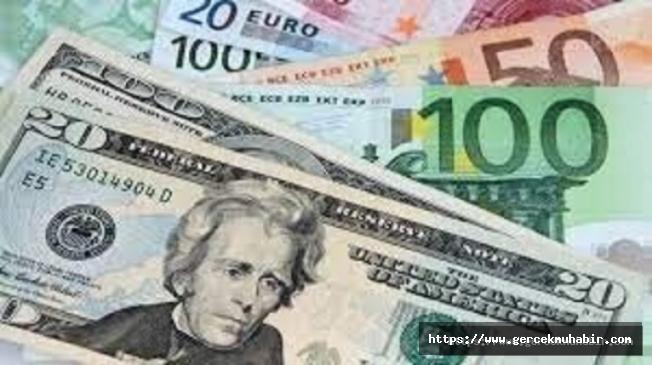 Dolar 8,5 TL'ye, Euro 10 TL'ye dayandı
