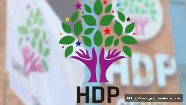 HDP'li iki milletvekili hakkında fezleke