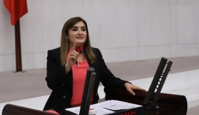 CHP'li Erdan Kılıç, Aslı Özkısırlar'ın Ölümü Nedeniyle Sağlık Bakanı Koca'yı İstifaya Çağırdı
