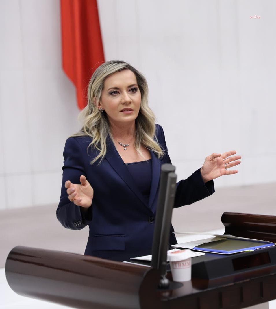 """İYİ Parti'li Cesur: """"Kadınların insan gibi muamele görmesinden mi rahatsızsınız"""""""