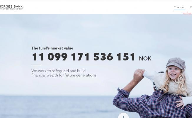 Norveç Varlık Fonu 46 Milyar Dolar Kar Etti
