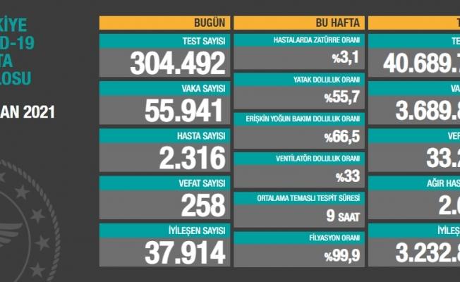 Türkiye'de koronavirüsten 258 kişi daha hayatını kaybetti