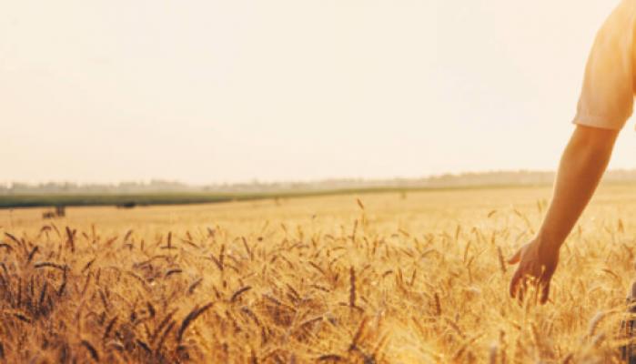 CHP Sözcüsü Öztrak: Her çiftçi ailesinin bu hükûmetten 98 bin lira kanuni alacağı var