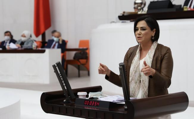 CHP'li Yüceer, Ergene ve Marmara'daki Çevre Kirliliğini Meclis Gündemine Taşıdı
