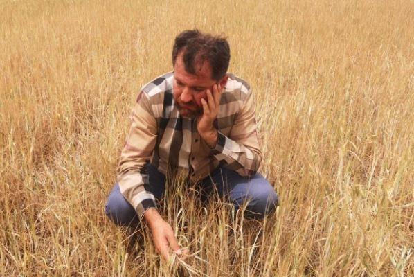 Bakan Pakdemirli'nin Açıkladığı Kuraklık Ödemesine Çiftçiden Tepki; Sadece 5 Köyün Hasarını Karşıladılar