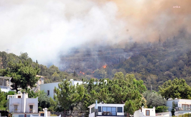 Bodrum merkezde orman yangını: Oteller ve evler boşaltılıyor