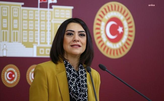 CHP'li Taşçıer, göçmen sorununun araştırılması için önerge verdi