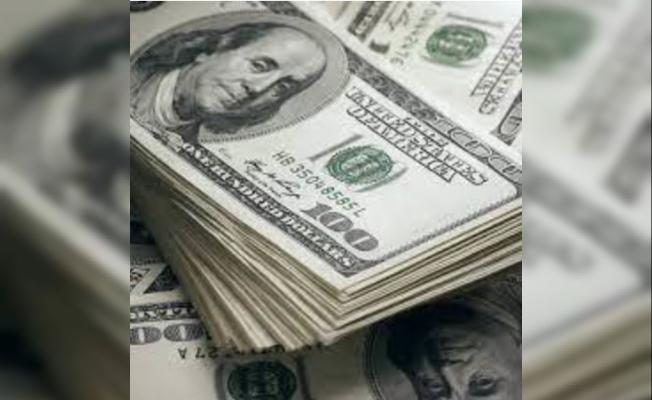 Kamu Bankaları Döviz Fazlası Verdi