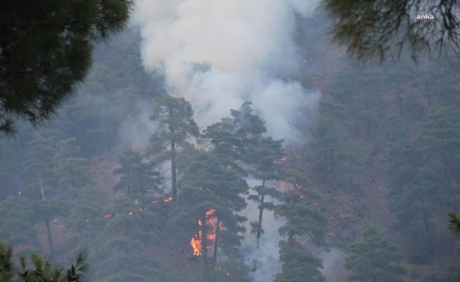 Kayseri Yahyalı'daki orman yangını kontrol altına alındı