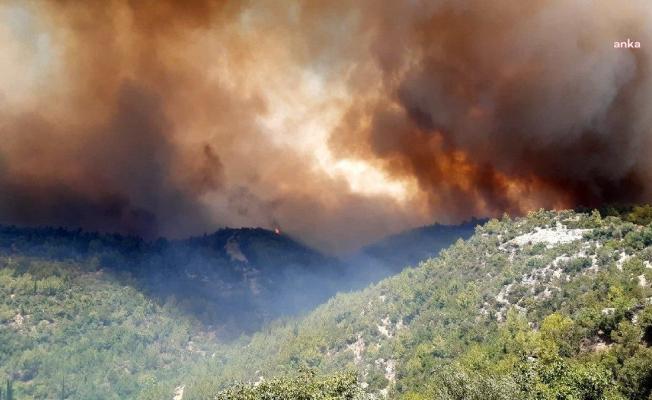 Manavgat'ta yangını söndürmek için mücadele eden iki işçi yaşamını yitirdi