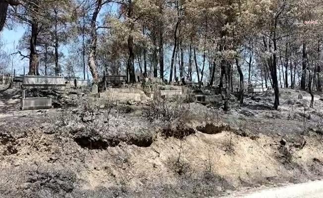 Osmaniye'de 1000 hektar kül oldu