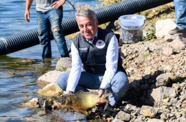 Kayseri'deki 13 göl ve gölete 678 bin 575 yavru balık bırakıldı