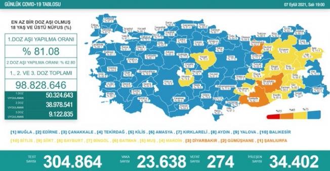 Türkiye'de koronavirüsten 274 kişi daha hayatını kaybetti