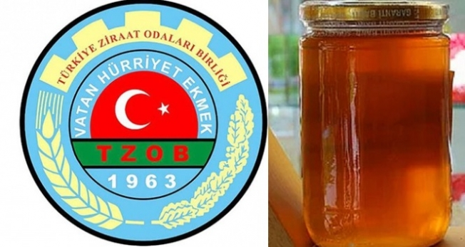 TZOB Başkanı Bayraktar, yaşanan kuraklık ve yangınların 'sahte bal satışına fırsat vereceğini' söyledi