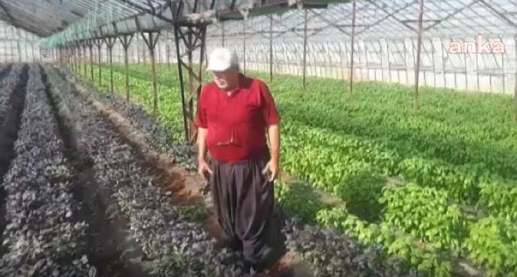 Borçlu Çiftçilere Haciz İşlemleri Başladı