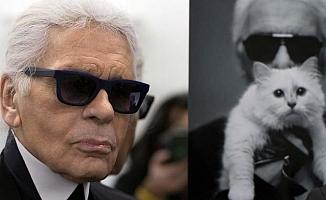 Lagerfeld'in 200 milyon doları kedisine kalabilir!