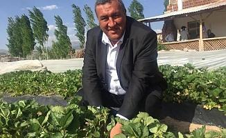 """Gürer: """"Aracısız, tarladan üreticiye satış"""""""