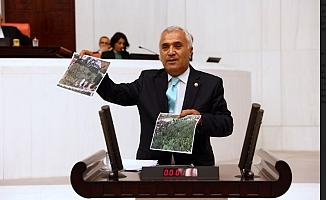 """""""ODTÜ ağaç katliamı kabul edilemez"""""""
