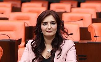 """CHP'li Kılıç: """"Tarım arazilerini koruduklarını sanıyorlar!"""""""