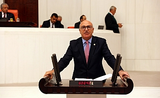 CHP'li Tanal'ın İnadı MHP'li Meclis Başkanvekilini pes ettirdi!