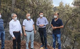 CHP'li heyet Adrasan'da incelemelerde bulundu