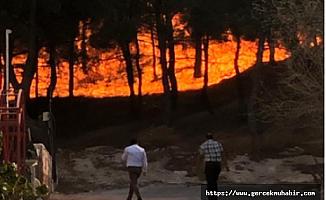 TBMM Başkanı Şentop: Hatay'daki yangınla ilgili sorumlular en kısa sürede bulunacak