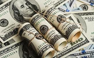 Merkez'in net döviz rezervi 1,5 milyar dolar arttı