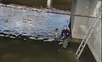 Yağmur suyu kanalında mahsur kalan köpek kurtarıldı