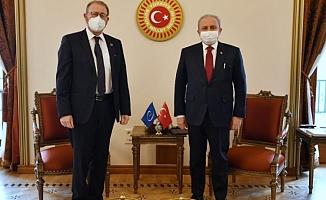 AKPM Başkanı Daems TBMM'de bir dizi görüşme yaptı