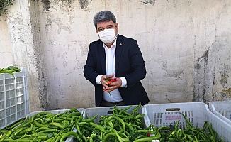 CHP'li Gökçel: Semt pazarları derhal açılsın