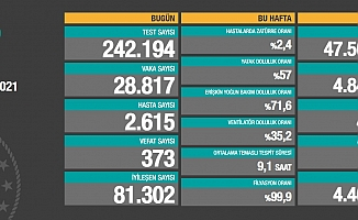 Koronavirüste vaka sayısı 28 bin 817 yeni vaka